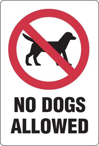 Graphic used for No Dogs on Campus